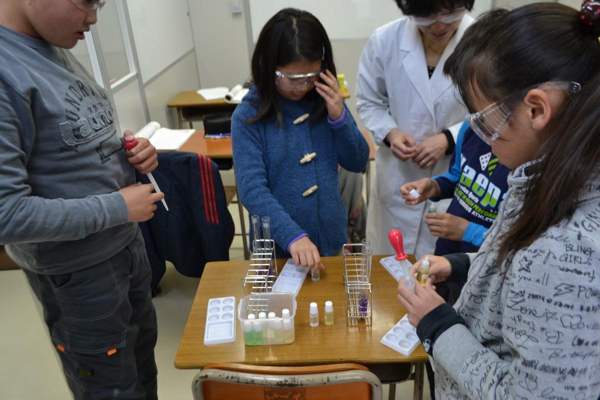 science2.JPG